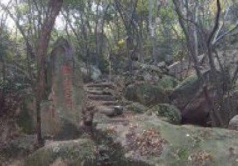苏州花山国家级森林公园图片