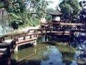 池國家森林公園