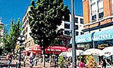 罗布森大街