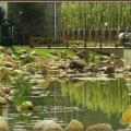 保利清华颐园 景观园林 QQ截图20120112161851