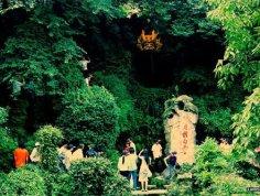 黄龙吐翠 图片
