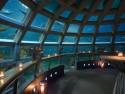 西雅图水族馆(Seattle Aquarium)