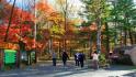 红石国家森林公园