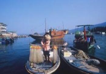 东升渔村图片