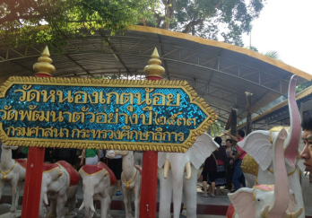 芭堤雅大象村图片
