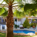 西班牙梅岛图片20 一居  户型图