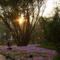 大运河孔雀城运河家园 景观园林 0732f5331e4f38a1b9e1cb7d949431