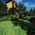 华银天鹅湖 景观园林 IMG_0298