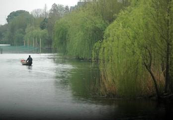 德清下渚湖湿地公园图片