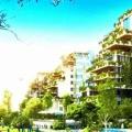 碧桂园森林城市 景观园林