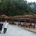 杉王明珠 景观园林 小区荷花池