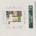 杉王明珠舒适型小两房雅居 两居 53㎡ 户型图