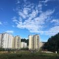 杉王明珠 景观园林 小区远景