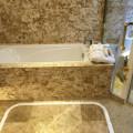东莞德洲城 样板间 浴室