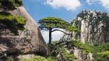 黄山欧罗巴国际花园