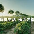 涿州桃源新都孔雀城 景观园林