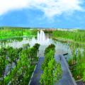 潮白河孔雀城中央公园 景观园林