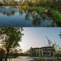新滨湖孔雀城 景观园林 新中式风格