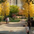 山东海城广场 景观园林
