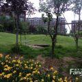 锦绣蓝湾 景观园林