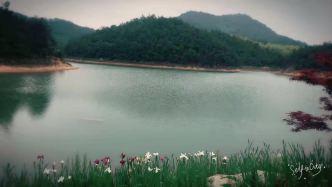 安吉五峰山山林枫居