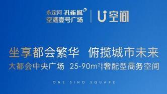 大都会中央广场 25-90㎡奢配型商务空间