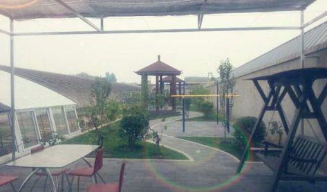 京西南农家院