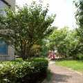 悦景苑碧水云天 景观园林