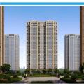 哈尔滨君豪义乌小商品城高层 一居  户型图