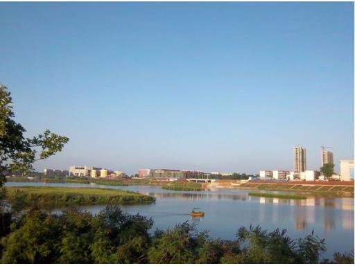 唐河湾湿地公园 唐河湾景观园林图片