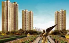 合生杭州湾国际新城