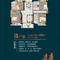 惠州 碧桂园太东公园上城四房两厅两卫两阳台 四居 126-128平米㎡ 户型图