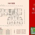 锦绣国际花城 一居  户型图