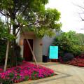 锦绣国际花城 景观园林
