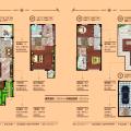 君安海天城245平豪华4居室 四居 245㎡ 户型图