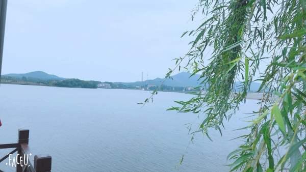 项目地址: 5a级茅山风景区薛铺镇仙姑村云湖旁一号农场对面.