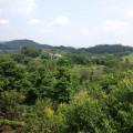 富力·惠林温泉 景观园林