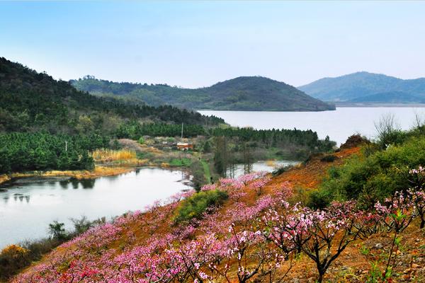 溧阳 天目湖风景区 稀缺70年产权住宅 天淼山庄最新动态 在售户型