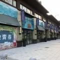 千灯碧桂园世纪城 建筑规划