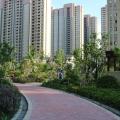 上海滨江裕花园 景观园林