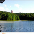 万科美的西江悦 景观园林