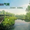 惠州碧桂园天樾湾 景观园林