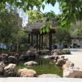 君安海天城 景观园林 实景拍摄