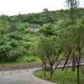 红宝度假村 景观园林