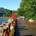 一渡景区天鹅湖 景观园林