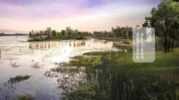 太湖庄园白鹭岛 常州武进区太湖景区别墅太湖庄园 还有哪些房源 太湖