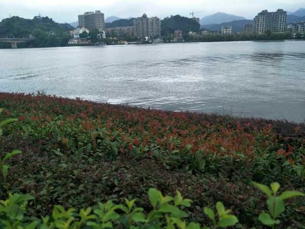 0571大杭州板 块建德高铁梅城核心板块 御品江南 一线