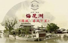 嘉兴南湖绿城春风十里