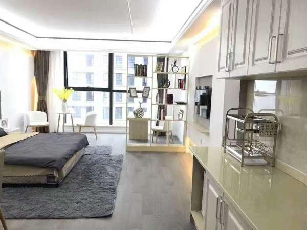 神盘再现嘉兴核心城区品质最高规划装修最好的纯高端酒店公寓楼盘.