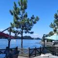 千岛湖桃源山庄 景观园林